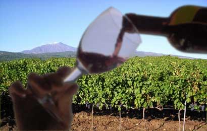 vino-etna1